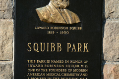 SQUIBB_4-2